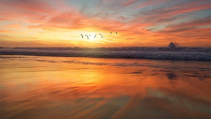 Tranquil sunset and seascape with birds and waves.